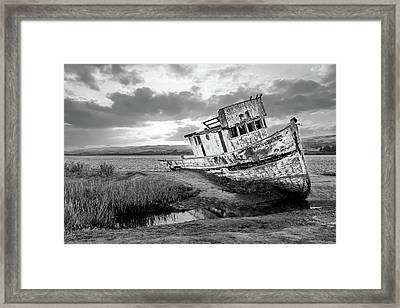 Shipwrecked In Point Lobos Framed Print by Jon Glaser