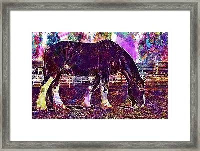 Framed Print featuring the digital art Shire Horse Horse Coupling  by PixBreak Art