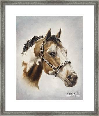 Show Off Framed Print by Cathy Cleveland