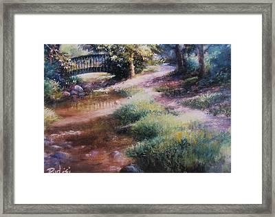 Shupp's Grove Framed Print