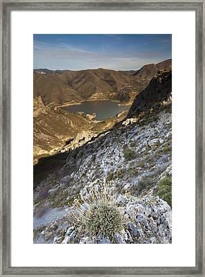 Sierra Nevada Framed Print by Andre Goncalves