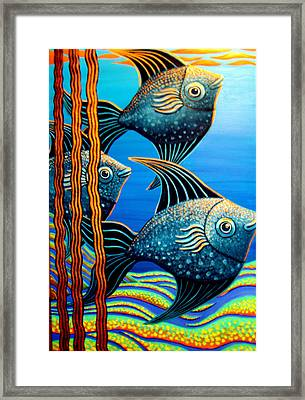 Sillyfish 3 Framed Print by Barbara Stirrup