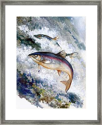 Silver Salmon Framed Print by Peggy Wilson