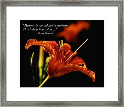 Single Tiger Lily Poster Framed Print by Roger Soule