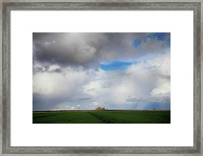 Skyward Framed Print by Laurie Search