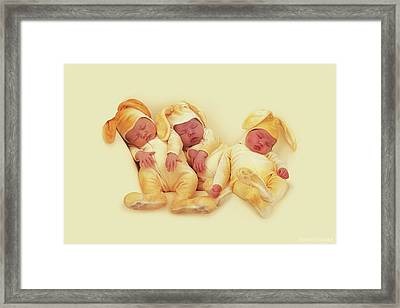 Sleeping Bunnies Framed Print