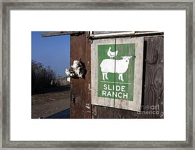 Slide Ranch, Golden Gate National Recreation Area Framed Print