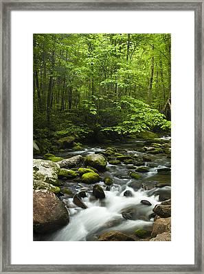 Smoky Mountain Stream Framed Print by Andrew Soundarajan