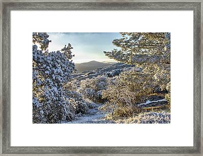 Snow At Sunrise 3 Framed Print by Peter Dyke