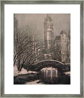 Snow In Central Park Framed Print by Tom Shropshire