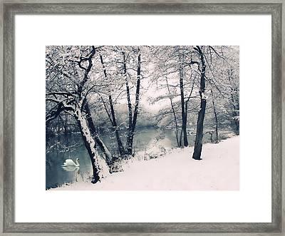 Snow Pond Framed Print by Jessica Jenney