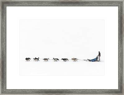 Snowbound Framed Print by Evelina Kremsdorf