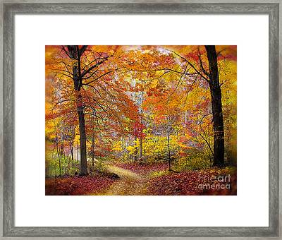 Soft Autumn Rain Framed Print