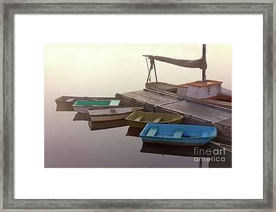 Soft Light Framed Print by Benjamin Williamson