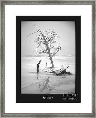 Solitude Framed Print by Sue Stefanowicz