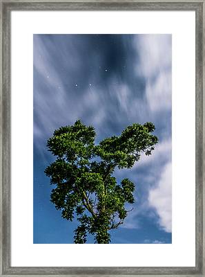 Sparkling Stars Framed Print by Shelby Young