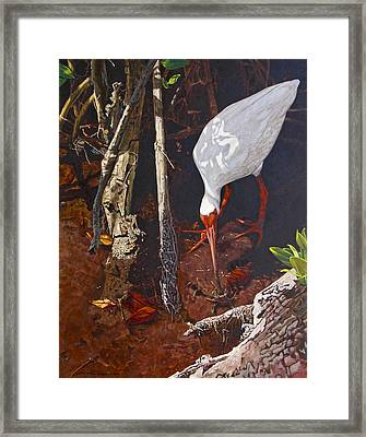 Sparring For Lunch Framed Print by Peter Muzyka