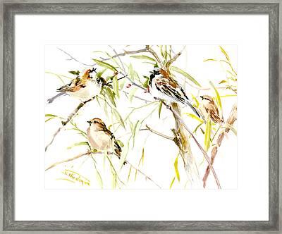 Sparrows Framed Print by Suren Nersisyan