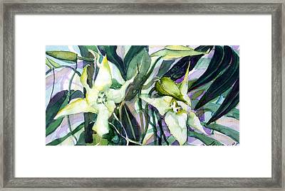 Spider Orchids Framed Print by Mindy Newman