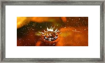 Splash Of Rainbow Framed Print by David Paul Murray