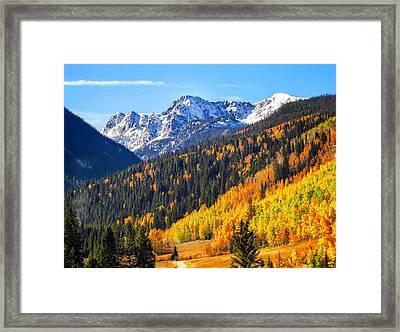 Splendid Fall Framed Print