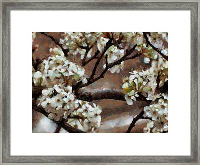 Spring Blossoms Framed Print by Ann Powell