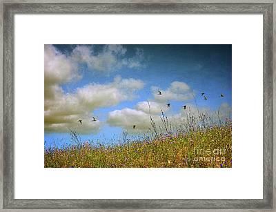 Spring Field Framed Print by Carlos Caetano