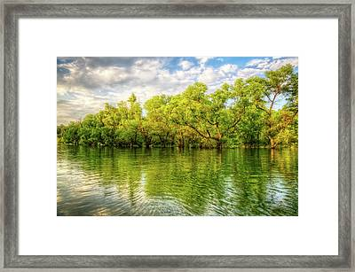 Spring Glow Framed Print by Debra and Dave Vanderlaan