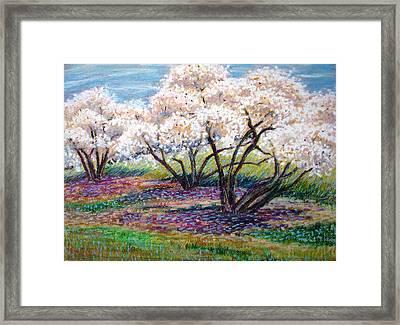 Spring Has Sprung Framed Print by Art Nomad Sandra  Hansen