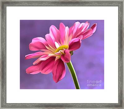 Spring Is In The Air Framed Print