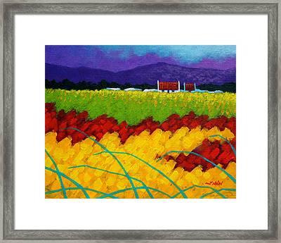 Spring Meadow Framed Print by John  Nolan