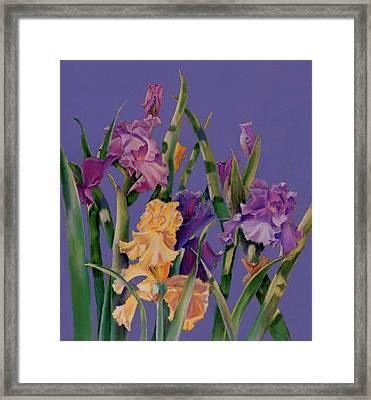 Spring Recital Framed Print