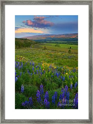 Spring Storm Passage Framed Print by Mike Dawson