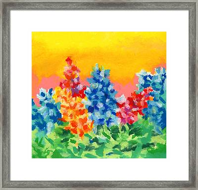 Spring Wildflowers Framed Print by Stephen Anderson