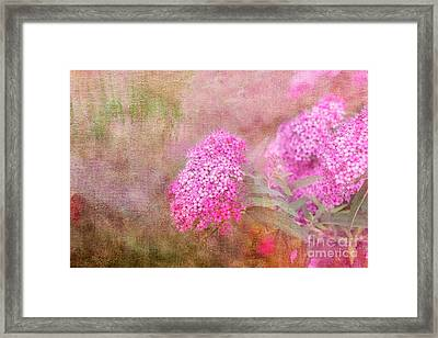 Framed Print featuring the photograph Springtime by Betty LaRue