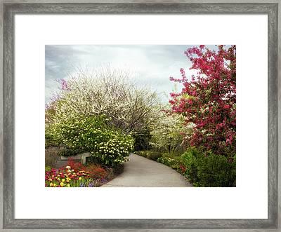 Springtime Framed Print by Jessica Jenney