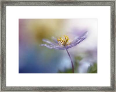 Springtime Watercolor Framed Print by Heidi Westum