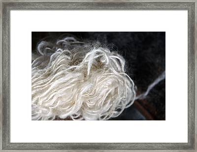 Framed Print featuring the photograph Spun Wool by Joanne Coyle