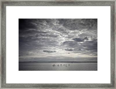 Stand-up Paddle Boarders On Strangford Framed Print by Panoramic Images