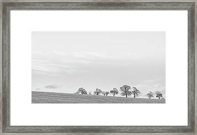 Framed Print featuring the photograph Standing Proudly by Jeremy Lavender Photography
