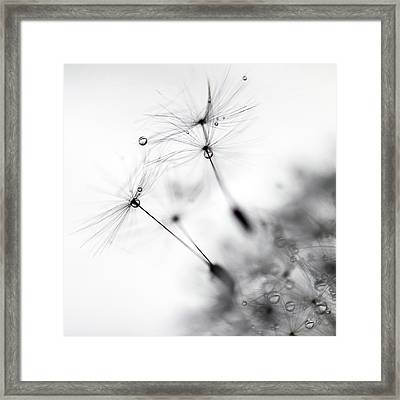 Standing Tall Framed Print by Rebecca Cozart