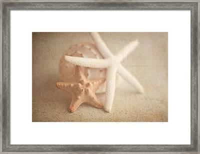 Starfish Still Life Framed Print by Tom Mc Nemar