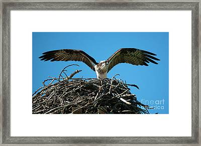 Stay Away Framed Print