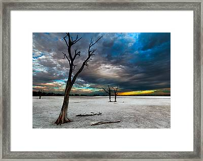 Still Here Framed Print