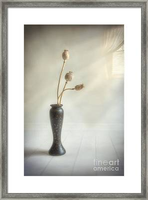 Still Life Framed Print by Veikko Suikkanen
