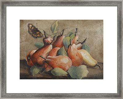Still Life With Pears And A Butterfly Framed Print