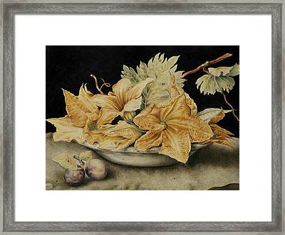 Still Life With Pumpkin Flowers And Vine Leaves Framed Print by Giovanna Garzoni