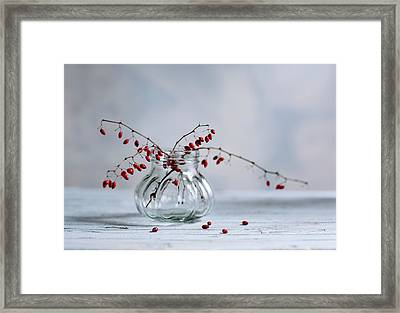 Still Life With Red Berries Framed Print by Nailia Schwarz