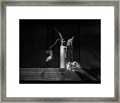 Still Life With Tulip Framed Print by Nailia Schwarz