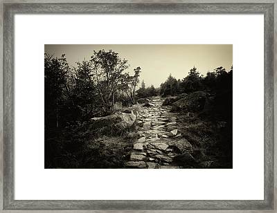 Stone Trail In The Mountains Framed Print